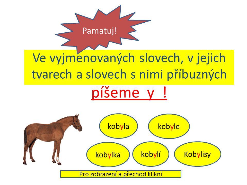 Ve vyjmenovaných slovech, v jejich tvarech a slovech s nimi příbuzných píšeme y .