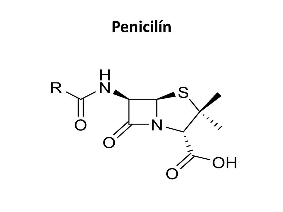 Bílkoviny (proteiny) biopolymery 20 základních aminokyselin makromolekuly o molekulové hmotnosti vyšší než 10 000 složeny z 200 – 1 000 aminokyselin počet, druh a pořadí vázaných aminokyselin určuje vlastnosti bílkovin