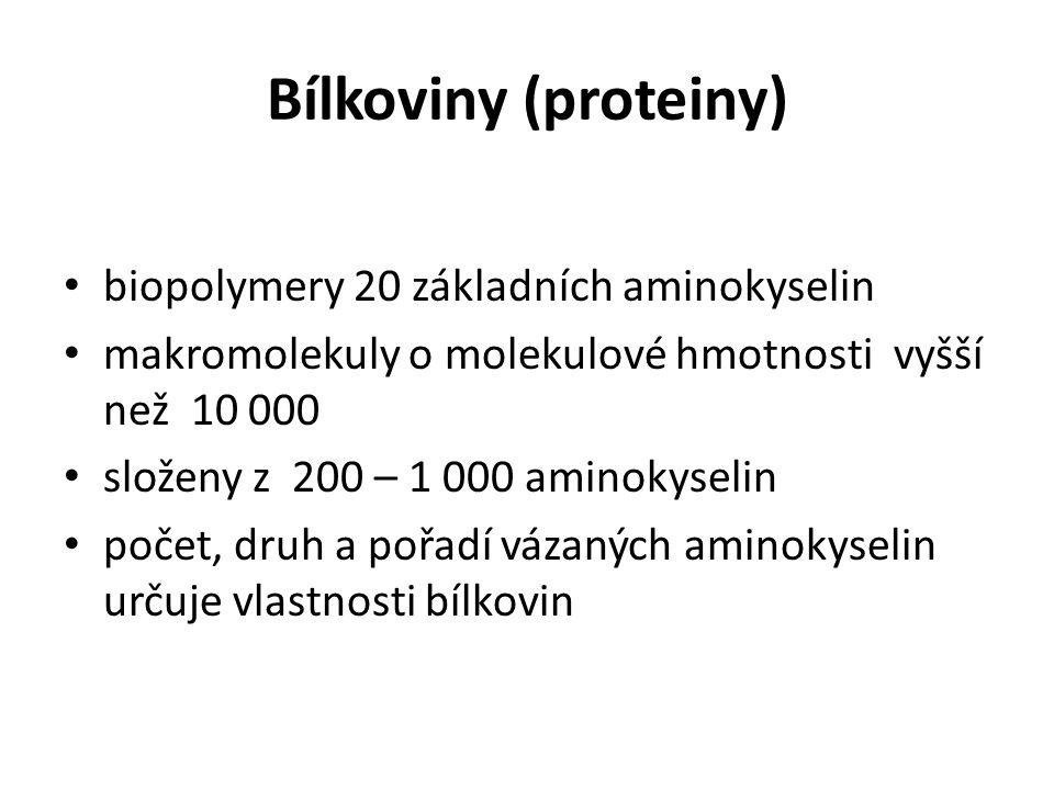 Bílkoviny (proteiny) biopolymery 20 základních aminokyselin makromolekuly o molekulové hmotnosti vyšší než 10 000 složeny z 200 – 1 000 aminokyselin p
