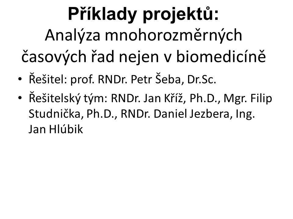 Příklady projektů: Analýza mnohorozměrných časových řad nejen v biomedicíně Řešitel: prof. RNDr. Petr Šeba, Dr.Sc. Řešitelský tým: RNDr. Jan Kříž, Ph.