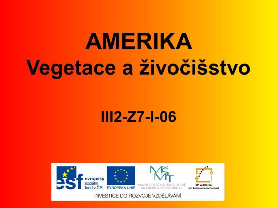 AMERIKA Vegetace a živočišstvo III2-Z7-I-06