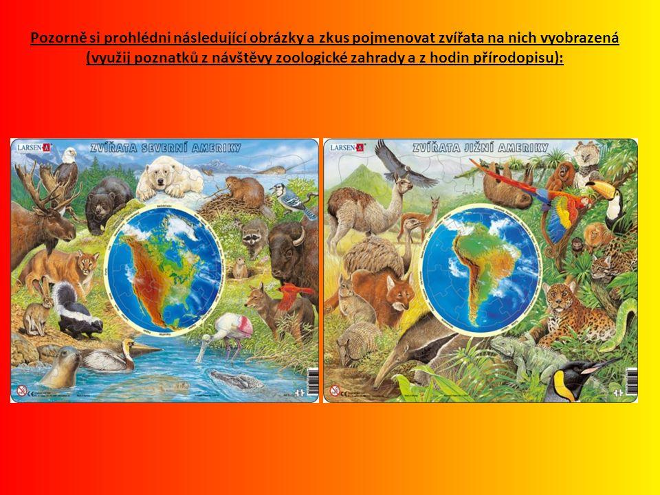 Pozorně si prohlédni následující obrázky a zkus pojmenovat zvířata na nich vyobrazená (využij poznatků z návštěvy zoologické zahrady a z hodin přírodopisu):