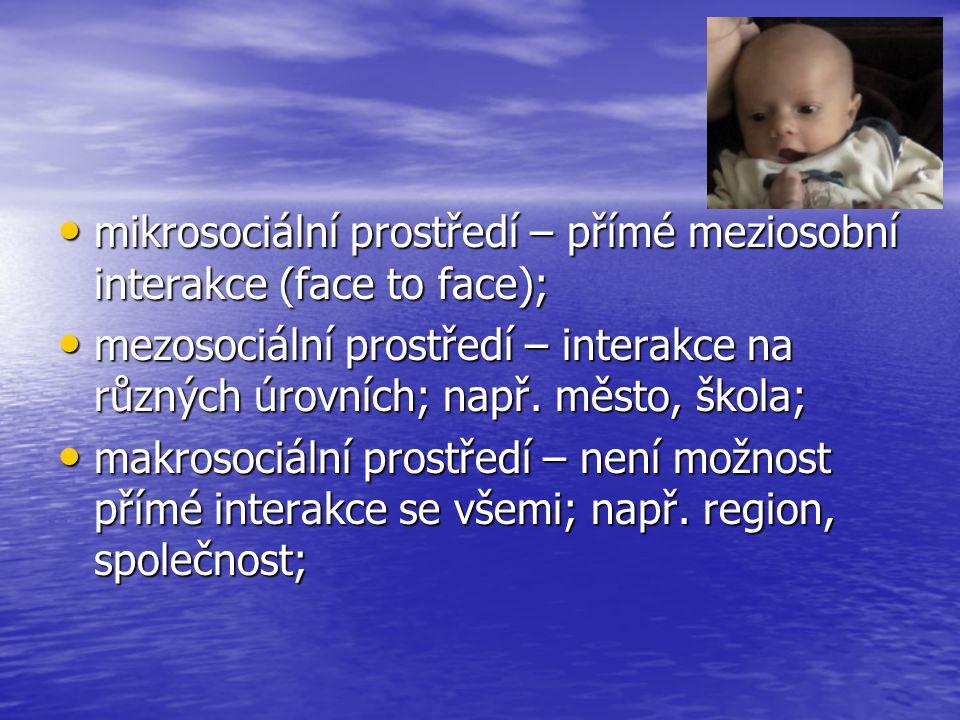 mikrosociální prostředí – přímé meziosobní interakce (face to face); mikrosociální prostředí – přímé meziosobní interakce (face to face); mezosociální
