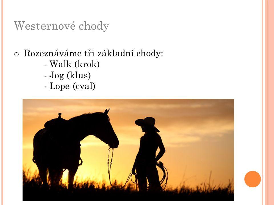 Westernové chody o Rozeznáváme tři základní chody: - Walk (krok) - Jog (klus) - Lope (cval)