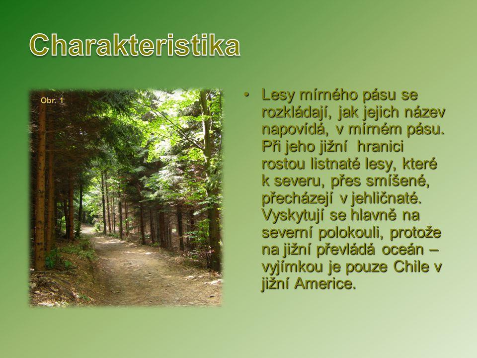 Lesy mírného pásu se rozkládají, jak jejich název napovídá, v mírném pásu. Při jeho jižní hranici rostou listnaté lesy, které k severu, přes smíšené,