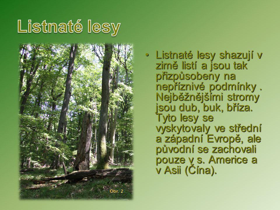Listnaté lesy shazují v zimě listí a jsou tak přizpůsobeny na nepříznivé podmínky. Nejběžnějšími stromy jsou dub, buk, bříza. Tyto lesy se vyskytovaly