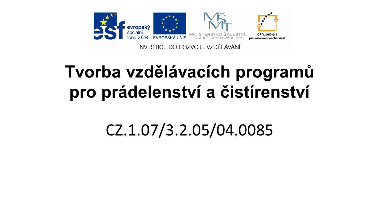 Tvorba vzdělávacích programů pro prádelenství a čistírenství CZ.1.07/3.2.05/04.0085