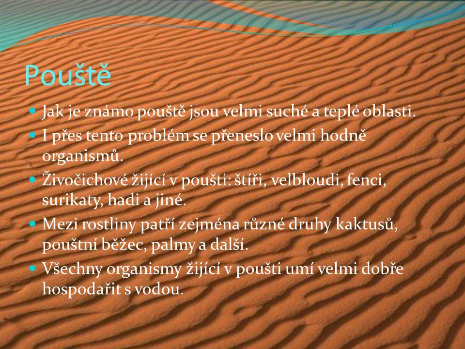 Pouště Jak je známo pouště jsou velmi suché a teplé oblasti. I přes tento problém se přeneslo velmi hodně organismů. Živočichové žijící v poušti: štíř