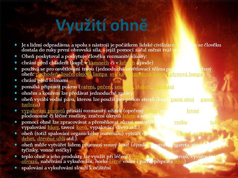 Využití ohně Je s lidmi odpradávna a spolu s nástroji je počátkem lidské civilizace.