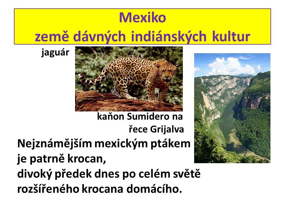 Mexiko země dávných indiánských kultur jaguár kaňon Sumidero na řece Grijalva Nejznámějším mexickým ptákem je patrně krocan, divoký předek dnes po celém světě rozšířeného krocana domácího.