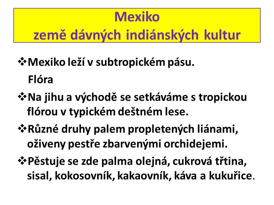 Mexiko země dávných indiánských kultur  Mexiko leží v subtropickém pásu. Flóra  Na jihu a východě se setkáváme s tropickou flórou v typickém deštném