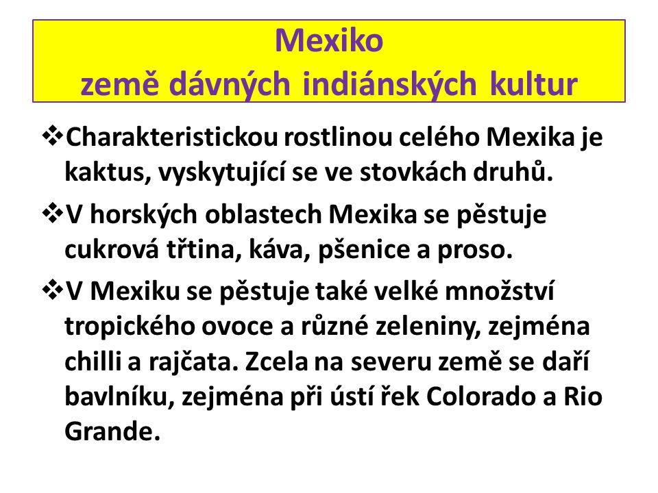 Mexiko země dávných indiánských kultur  Charakteristickou rostlinou celého Mexika je kaktus, vyskytující se ve stovkách druhů.  V horských oblastech