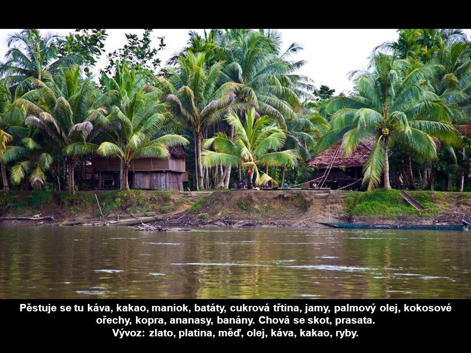 Pěstuje se tu káva, kakao, maniok, batáty, cukrová třtina, jamy, palmový olej, kokosové ořechy, kopra, ananasy, banány.