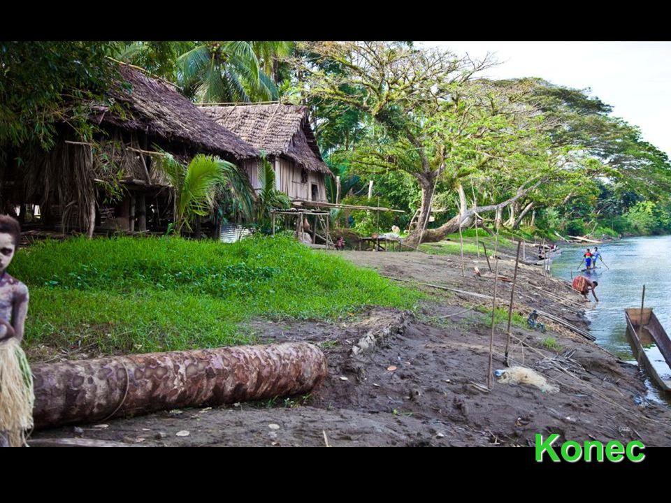Na Papui nejsou žádná velká zvířata, žádní savci, jediné, co se tady dá pořádně vidět, jsou ptáci.