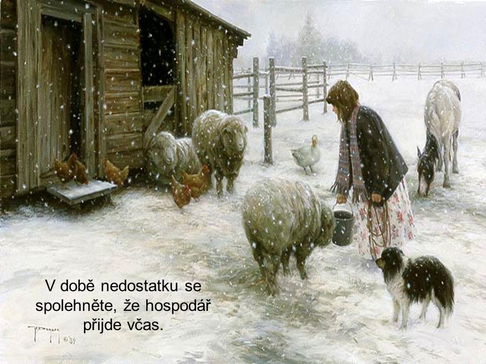 Berte si příklad ze zvířat, která věří, že zásoby vyjdou na dobu hladu.