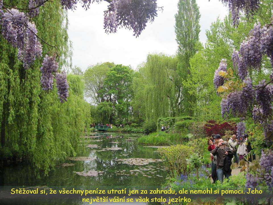V průběhu let se měnilo Monetovo nadšení pro různé rostlinné druhy.
