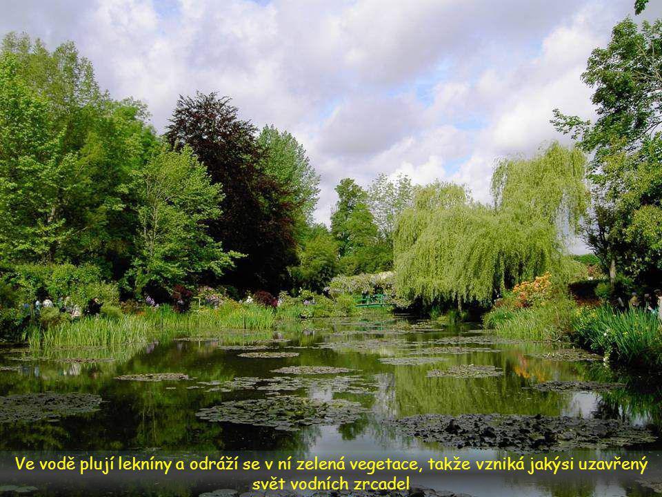 I za slunečného dne působí zahrada stinně, světlo se filtruje přes větve bambusů, smutečních vrb a azalek a v odlescích dopadá na vodní hladinu