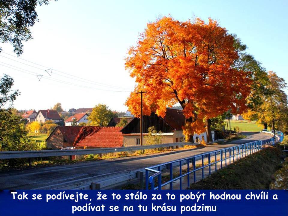 Podzimní kouzelné snímky části obce Vysočany pořídil p.