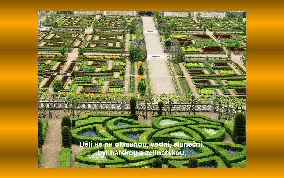 Dělí se na okrasnou, vodní, sluneční, bylinářskou a zelinářskou.