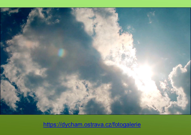 https://dycham.ostrava.cz/fotogalerie