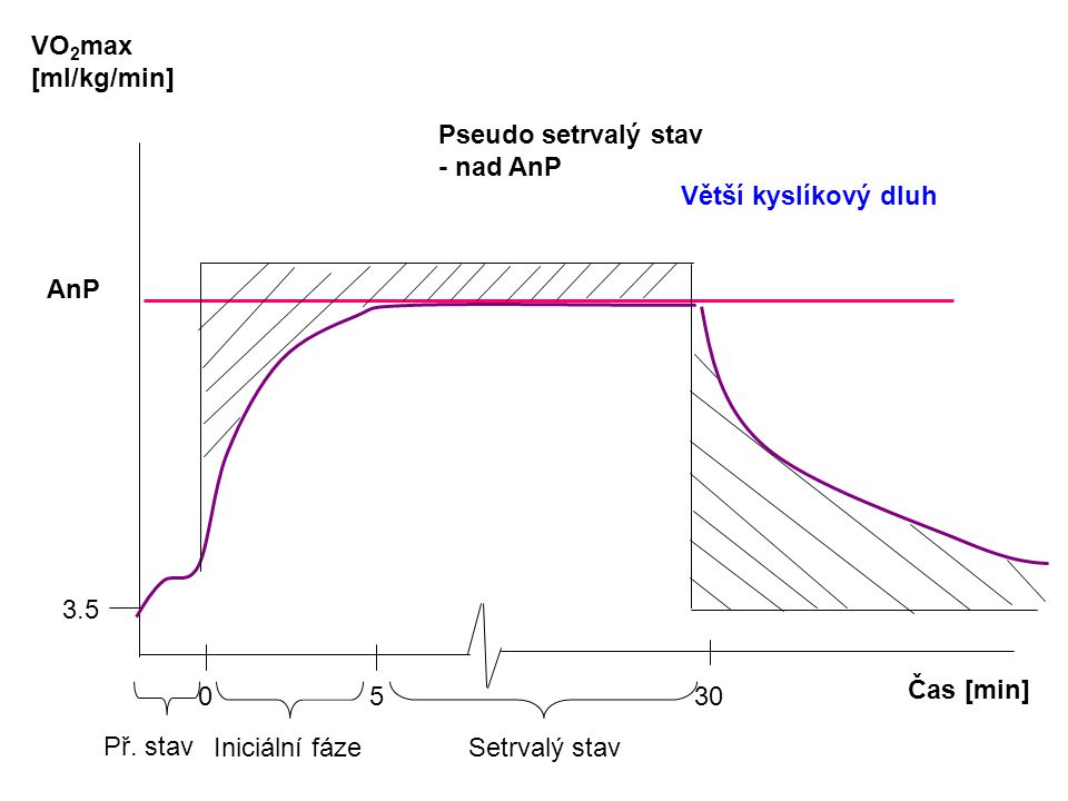 Čas [min] VO 2 max [ml/kg/min] AnP 0 5 30 3.5 Př.