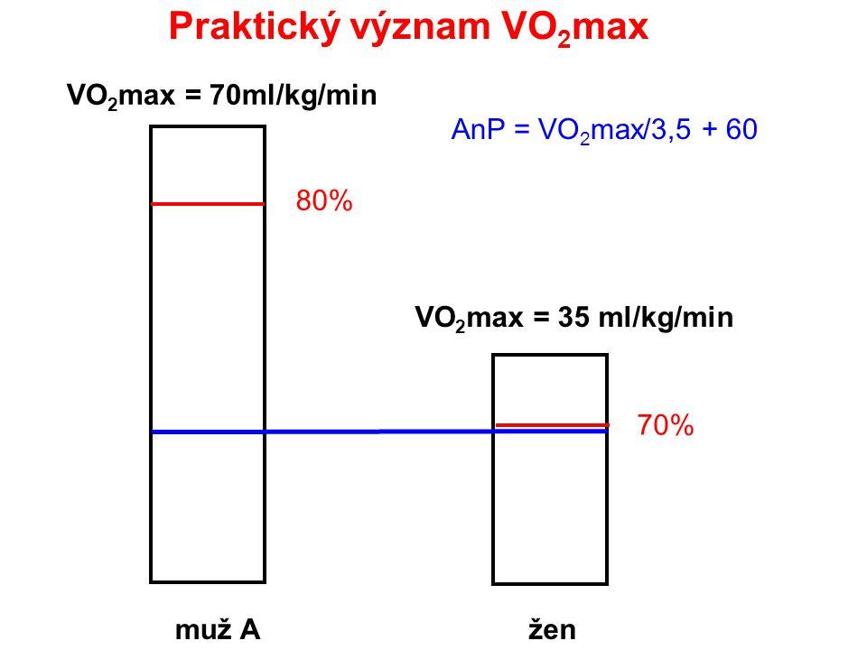 Praktický význam VO 2 max muž Ažen VO 2 max = 70ml/kg/min VO 2 max = 35 ml/kg/min AnP = VO 2 max/3,5 + 60 80% 70%