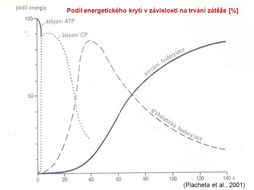 Podíl energetického krytí v závislosti na trvání zátěže [%] (Placheta et al., 2001)