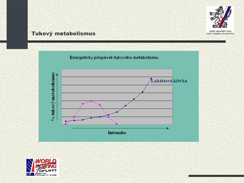 Tukový metabolismus Laktátová křivka