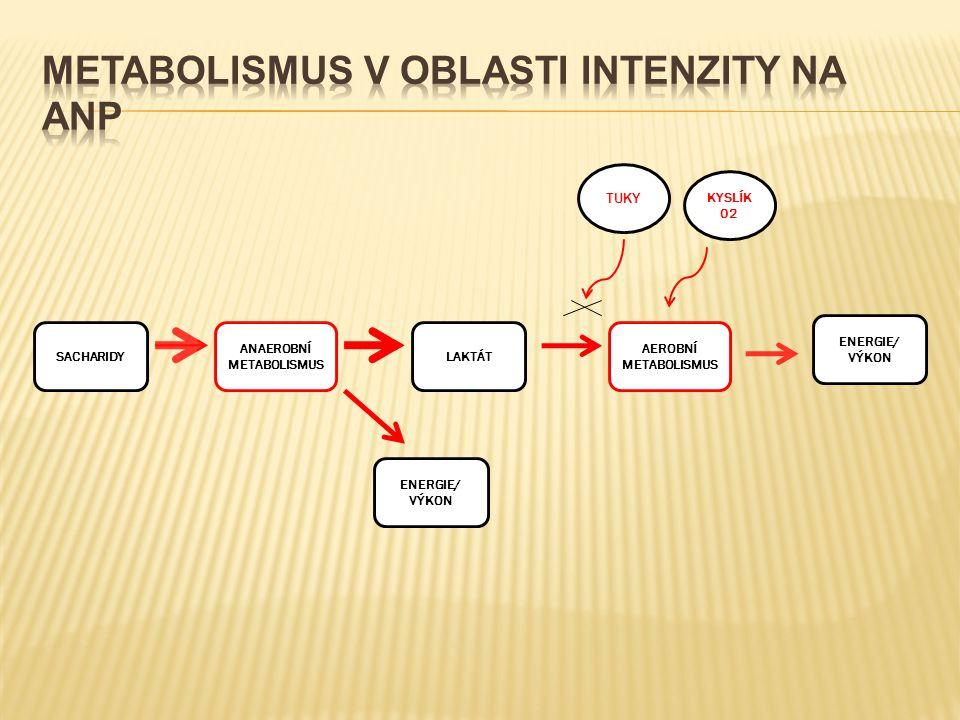 SACHARIDY ANAEROBNÍ METABOLISMUS LAKTÁT AEROBNÍ METABOLISMUS ENERGIE/ VÝKON ENERGIE/ VÝKON KYSLÍK 02 TUKY