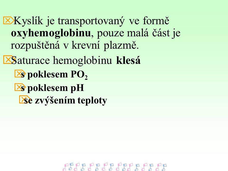  Kyslík je transportovaný ve formě oxyhemoglobinu, pouze malá část je rozpuštěná v krevní plazmě.