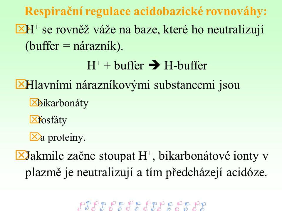  H + se rovněž váže na baze, které ho neutralizují (buffer = nárazník). H + + buffer  H-buffer  Hlavními nárazníkovými substancemi jsou  bikarboná