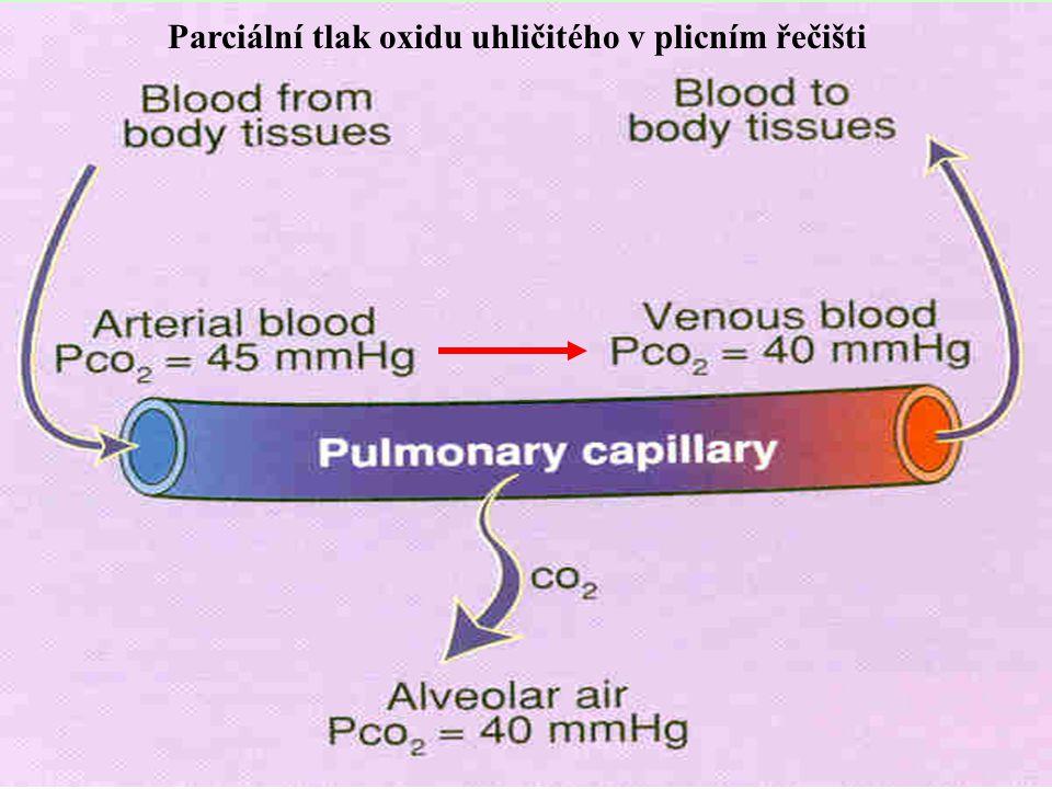 Respirační regulace acidobazické rovnováhy:  Pokles pH (vzestup CO 2 a H + ) zhoršuje svalovou kontraktilitu a tvorbu ATP.