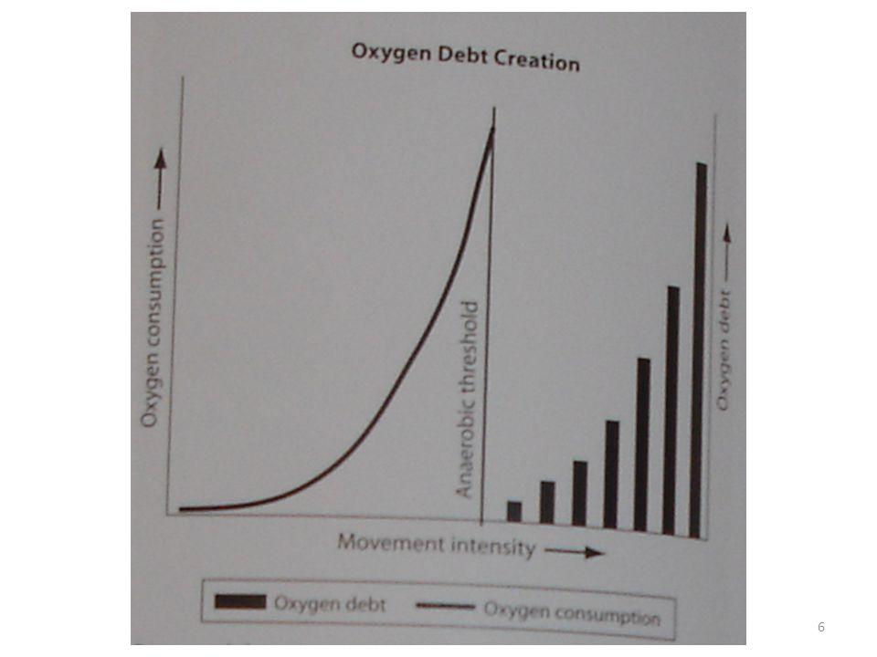 – po skončení aktivity jídlo k nastartování regenerace co nejdříve 4:1 rychlé cukry:proteiny (proteinový nápoj) cca 100g:25g důležité!!.
