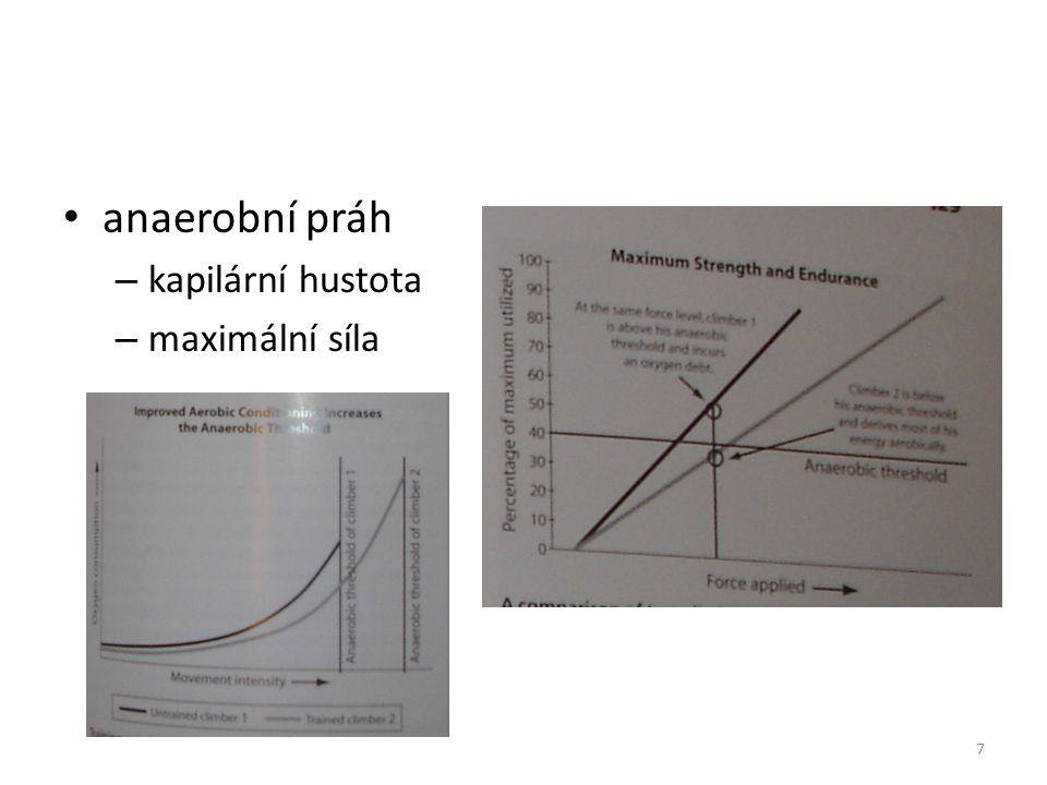 anaerobní práh – kapilární hustota – maximální síla 7