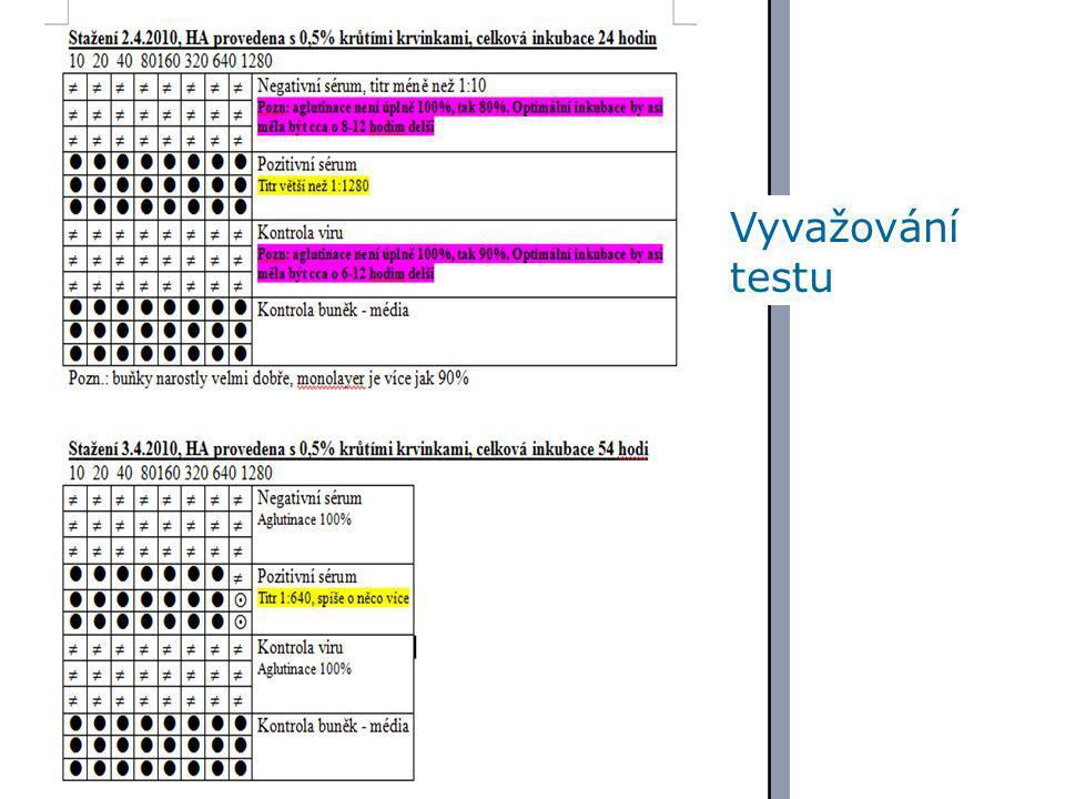 Vyvažování testu
