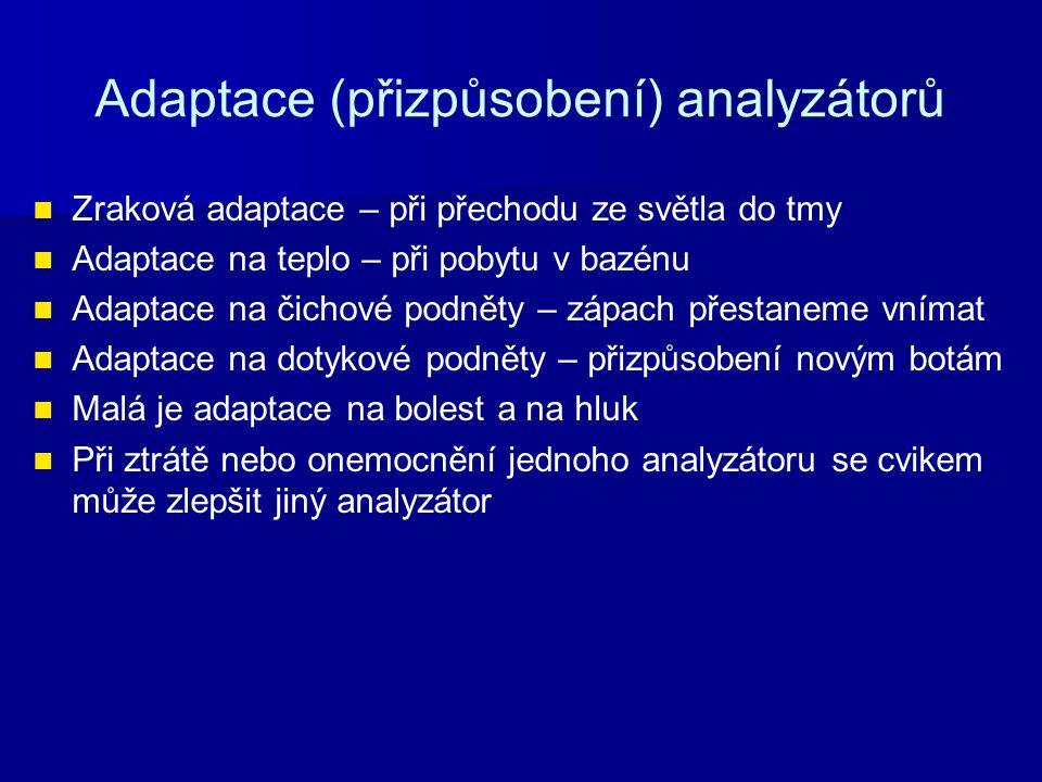 Adaptace (přizpůsobení) analyzátorů Zraková adaptace – při přechodu ze světla do tmy Adaptace na teplo – při pobytu v bazénu Adaptace na čichové podně