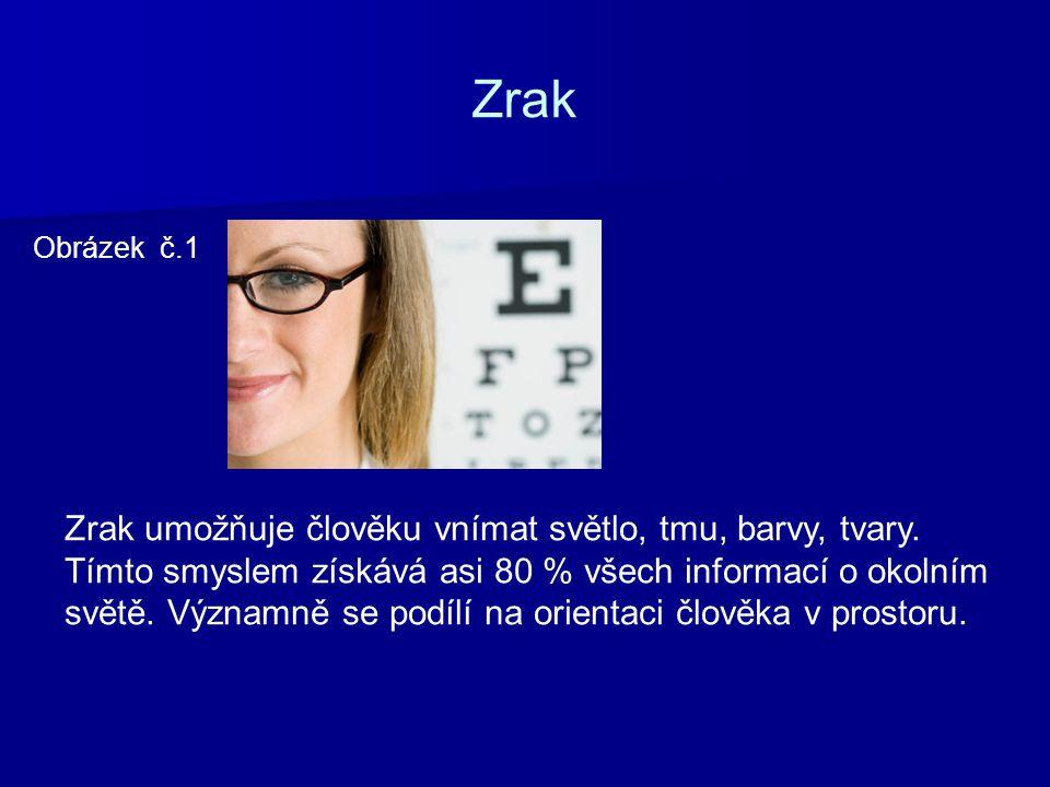 Zrak Obrázek č.1 Zrak umožňuje člověku vnímat světlo, tmu, barvy, tvary. Tímto smyslem získává asi 80 % všech informací o okolním světě. Významně se p