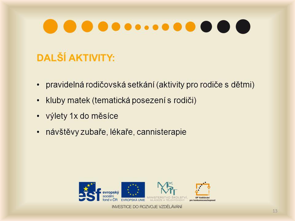 13 DALŠÍ AKTIVITY: pravidelná rodičovská setkání (aktivity pro rodiče s dětmi) kluby matek (tematická posezení s rodiči) výlety 1x do měsíce návštěvy