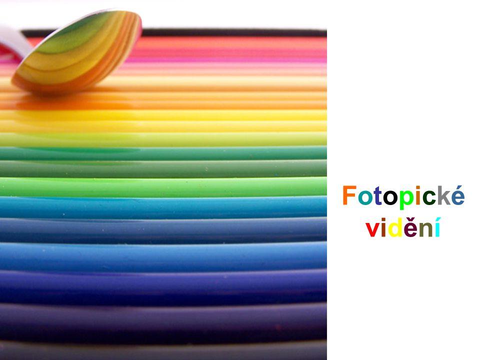 FotopickéviděníFotopickévidění