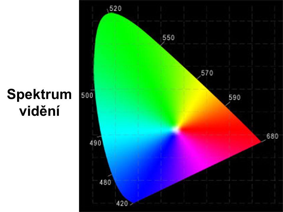 Spektrum vidění