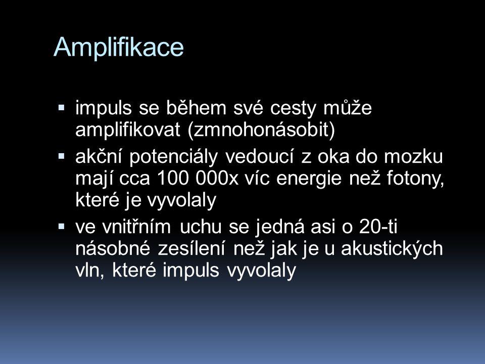 Amplifikace  impuls se během své cesty může amplifikovat (zmnohonásobit)  akční potenciály vedoucí z oka do mozku mají cca 100 000x víc energie než