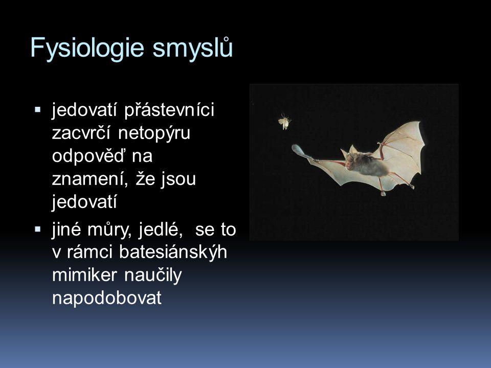 Fysiologie smyslů  jedovatí přástevníci zacvrčí netopýru odpověď na znamení, že jsou jedovatí  jiné můry, jedlé, se to v rámci batesiánskýh mimiker naučily napodobovat