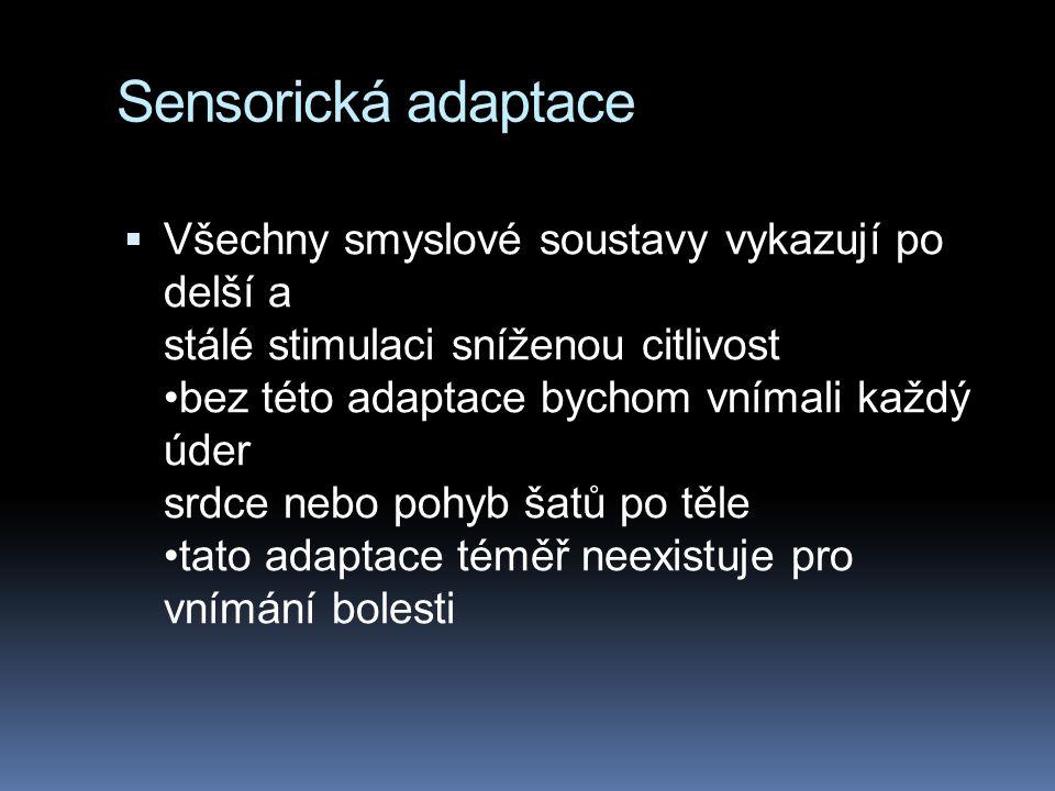 Sensorická adaptace  Všechny smyslové soustavy vykazují po delší a stálé stimulaci sníženou citlivost bez této adaptace bychom vnímali každý úder srd