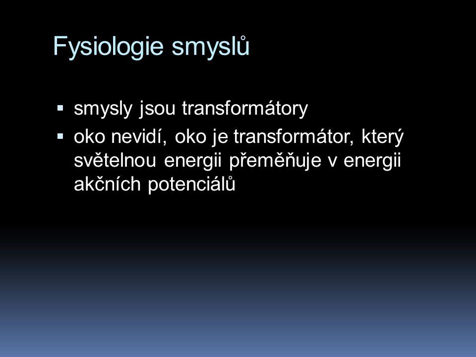 Fysiologie smyslů  smysly jsou transformátory  oko nevidí, oko je transformátor, který světelnou energii přeměňuje v energii akčních potenciálů
