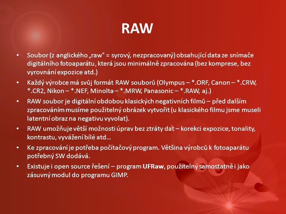 """Soubor (z anglického """" raw = syrový, nezpracovaný) obsahující data ze snímače digitálního fotoaparátu, která jsou minimálně zpracována (bez komprese, bez vyrovnání expozice atd.) Každý výrobce má svůj formát RAW souborů (Olympus – *.ORF, Canon – *.CRW, *.CR2, Nikon – *.NEF, Minolta – *.MRW, Panasonic – *.RAW, aj.) RAW soubor je digitální obdobou klasických negativních filmů – před dalším zpracováním musíme použitelný obrázek vytvořit (u klasického filmu jsme museli latentní obraz na negativu vyvolat)."""
