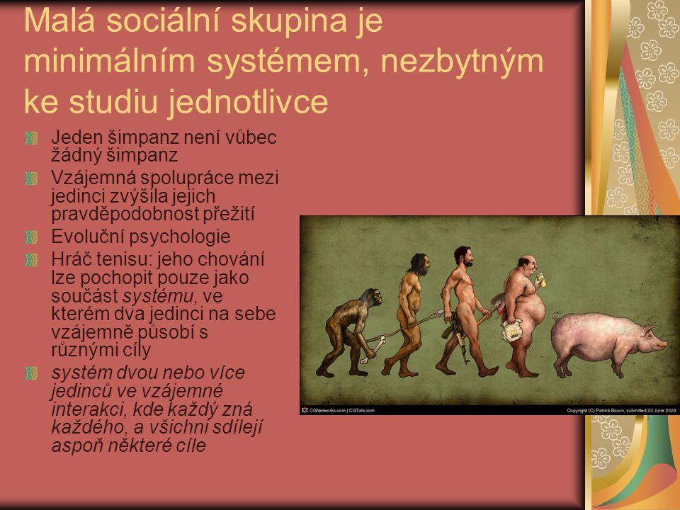Malá sociální skupina je minimálním systémem, nezbytným ke studiu jednotlivce Jeden šimpanz není vůbec žádný šimpanz Vzájemná spolupráce mezi jedinci
