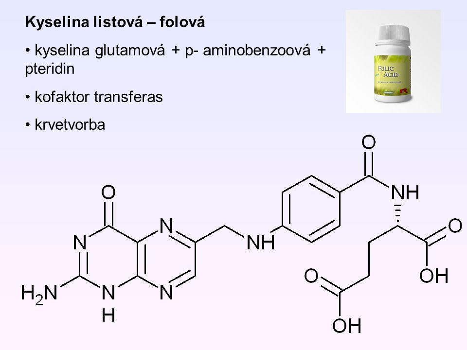 Kyselina listová – folová kyselina glutamová + p- aminobenzoová + pteridin kofaktor transferas krvetvorba