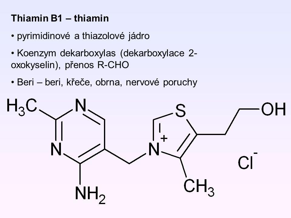 Thiamin B1 – thiamin pyrimidinové a thiazolové jádro Koenzym dekarboxylas (dekarboxylace 2- oxokyselin), přenos R-CHO Beri – beri, křeče, obrna, nervo