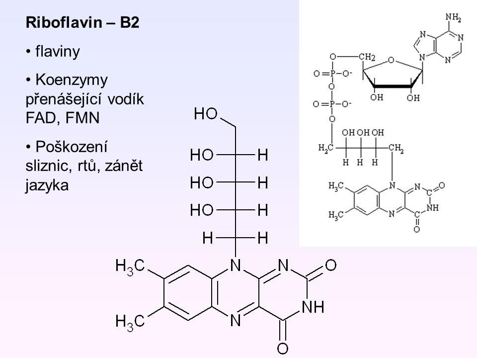 Riboflavin – B2 flaviny Koenzymy přenášející vodík FAD, FMN Poškození sliznic, rtů, zánět jazyka