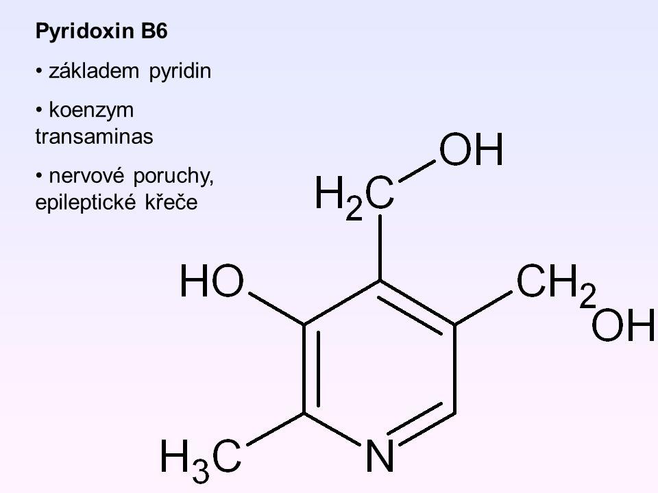 Pyridoxin B6 základem pyridin koenzym transaminas nervové poruchy, epileptické křeče